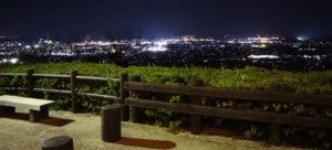 西条八堂山夜景