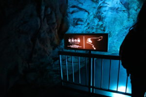 龍河洞17