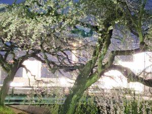 内子町郷之谷川