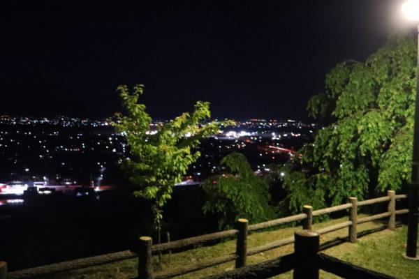 向麻山公園