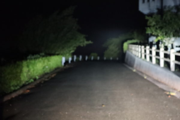 肱川あらし展望公園