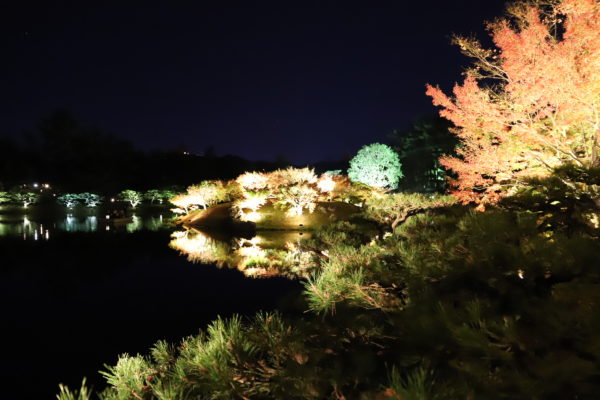 香川栗林公園ライトアップ2020