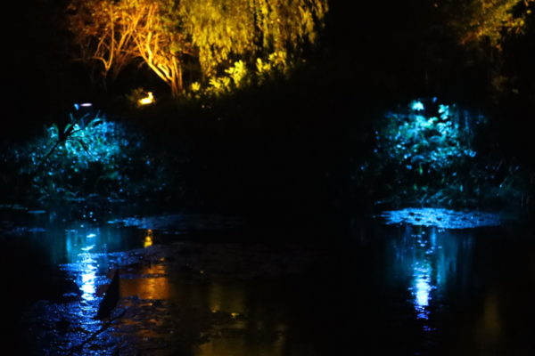 【高知】光のフェスタinモネの庭2020