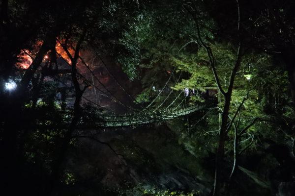 祖谷のかずら橋2020