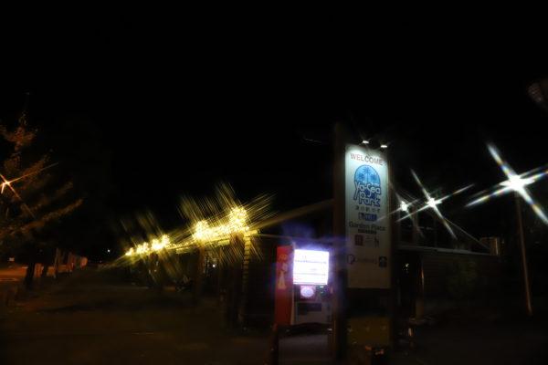 【高知】浜辺のイルミネーション2020