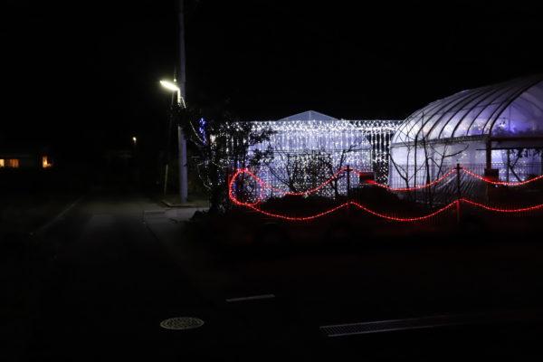 【高知】第7回 国分竹灯り憧憬の路9