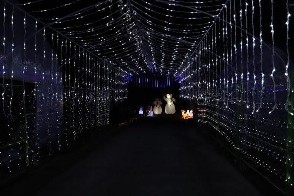 【高知】第7回 国分竹灯り憧憬の路10