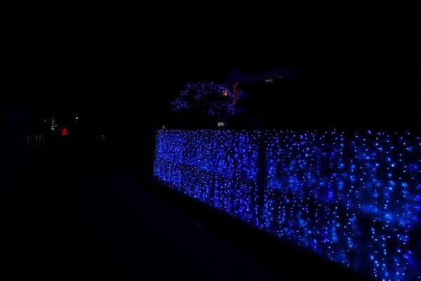 【高知】第7回 国分竹灯り憧憬の路17