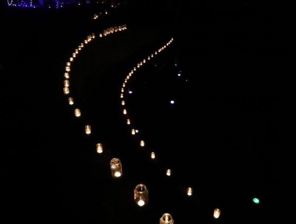 【高知】第7回 国分竹灯り憧憬の路31