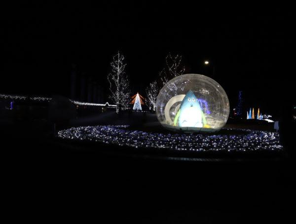 【徳島】 あすたむらんど徳島2020white illumination~希望~③