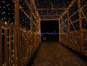 【徳島】 あすたむらんど徳島2020white illumination~希望~⑩