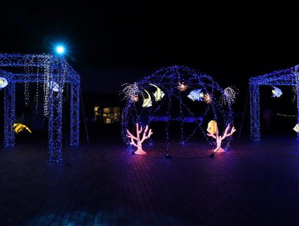 【徳島】 あすたむらんど徳島2020white illumination~希望~⑬