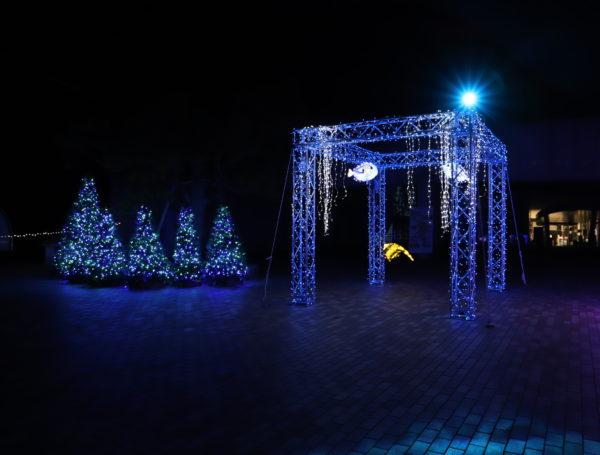 【徳島】 あすたむらんど徳島2020white illumination~希望~⑮