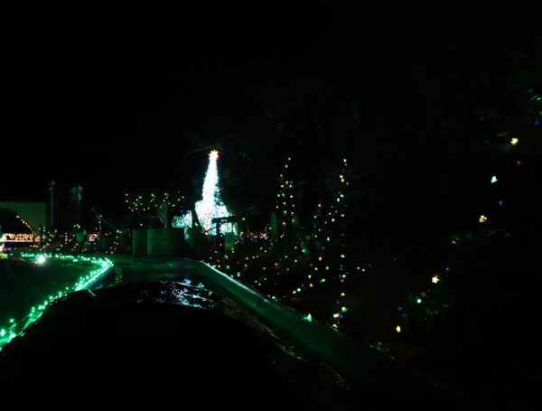 【徳島】 あすたむらんど徳島2020white illumination~希望~30