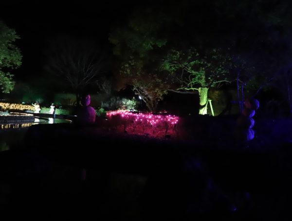 【徳島】 あすたむらんど徳島2020white illumination~希望~40