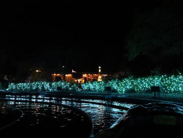 【徳島】 あすたむらんど徳島2020white illumination~希望~51