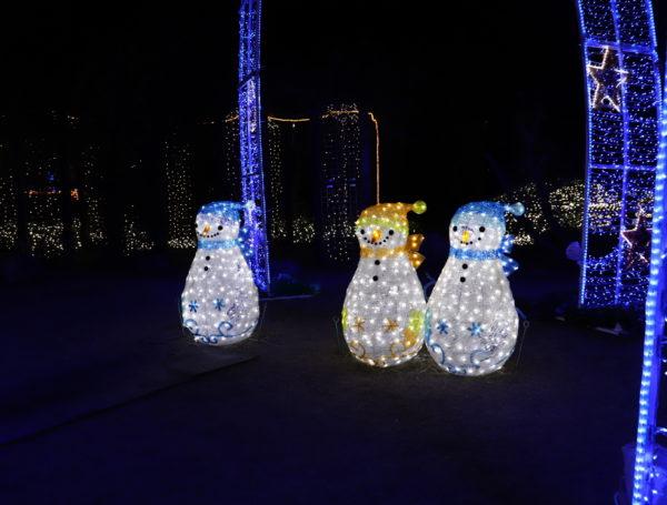 【徳島】 あすたむらんど徳島2020white illumination~希望~59