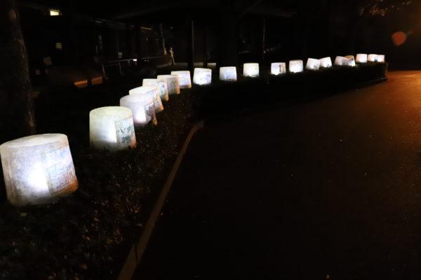 【愛媛】とべ動物園 ⑥ライオン舎前の高木付近からオアシスガーデン