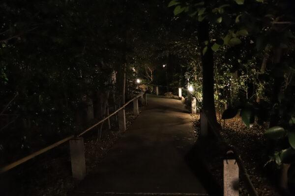 【愛媛】椿神社